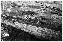 Reef Bay Trail petroglyphs. Virgin Islands National Park ( black and white)
