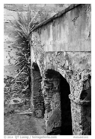 Wall and arch, Reef Bay sugar factory. Virgin Islands National Park (black and white)