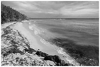 Beach and Genti Bay. Virgin Islands National Park ( black and white)