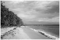 Reef Bay beach. Virgin Islands National Park ( black and white)