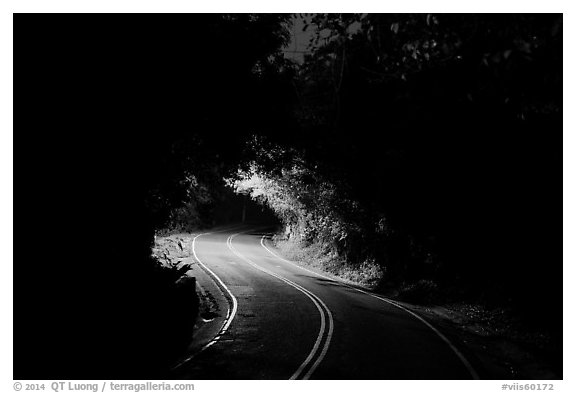 Centerline road at night. Virgin Islands National Park (black and white)