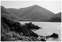 Jagged shoreline and green hills, Great Lameshur Bay. Virgin Islands National Park ( black and white)
