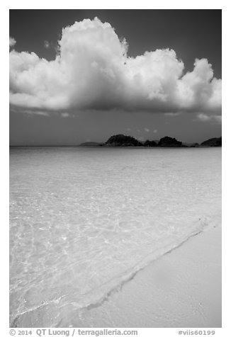 Sand, urquoise waters, and Trunk Cay, Trunk Bay. Virgin Islands National Park (black and white)