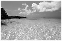 Turquoise clear waters, Trunk Bay Beach. Virgin Islands National Park ( black and white)