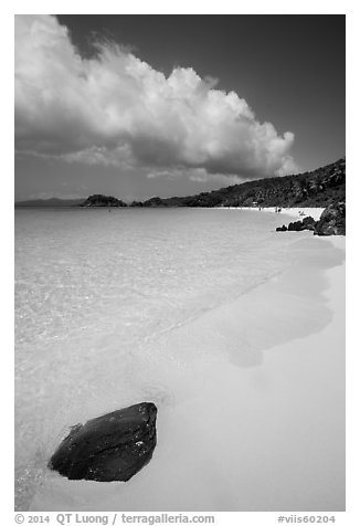 Tropical beach with white sand and turquoise waters, Trunk Bay. Virgin Islands National Park (black and white)