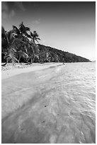 Tropical beach in the evening, Salomon Bay. Virgin Islands National Park ( black and white)