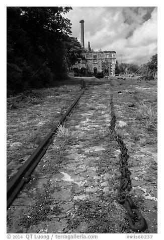 Creque Marine Railway slipway, Hassel Island. Virgin Islands National Park (black and white)