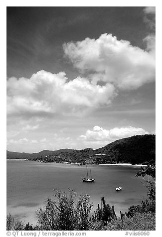 Yachts anchored in Hurricane Hole Bay. Virgin Islands National Park (black and white)