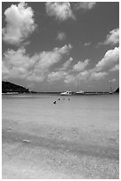 Tropical beach and yachts. Virgin Islands National Park ( black and white)