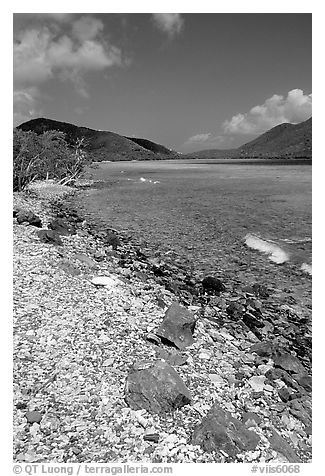 Shore and Turquoise waters, Leinster Bay. Virgin Islands National Park (black and white)
