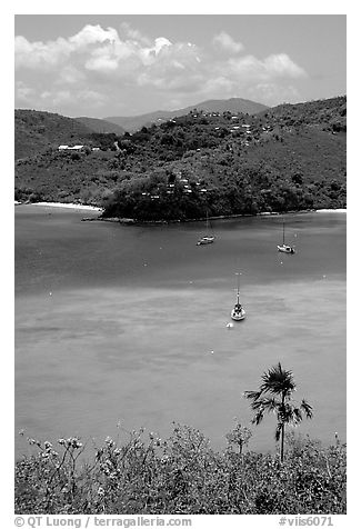 Tropical anchorage, Francis Bay. Virgin Islands National Park (black and white)