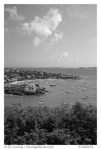 Cruz Bay harbor. Saint John, US Virgin Islands (black and white)