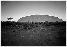 Sunrise, Ayers Rock. Uluru-Kata Tjuta National Park, Northern Territories, Australia (black and white)