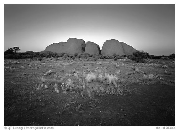 Olgas at sunset. Olgas, Uluru-Kata Tjuta National Park, Northern Territories, Australia (black and white)