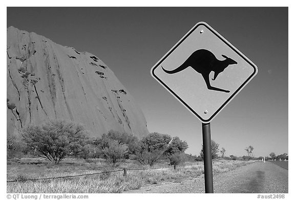 black and white picture  photo  kangaroo crossing sign near ayers rock  australia