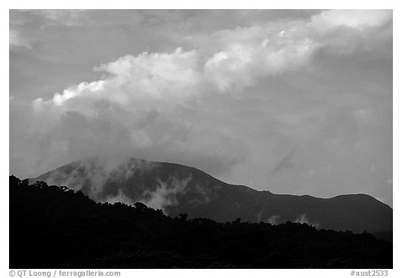 Mountains covered with rain forest near Cape Tribulation. Queensland, Australia (black and white)