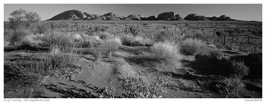 Outback landscape, Olgas. Olgas, Uluru-Kata Tjuta National Park, Northern Territories, Australia (black and white)