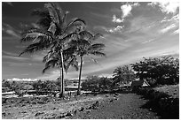 Lapakahi historical park. Big Island, Hawaii, USA ( black and white)