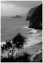Untamed coast of the North shore from Polulu Valley overlook, dusk. Big Island, Hawaii, USA ( black and white)