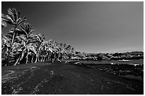 Black sand beach at Punaluu. Big Island, Hawaii, USA (black and white)