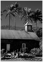 Church (1860) and palm trees, Keanae Peninsula. Maui, Hawaii, USA ( black and white)