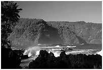 Steep Hana coast seen from the Keanae Peninsula. Maui, Hawaii, USA ( black and white)