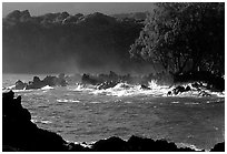 Crashing surf, Keanae Peninsula. Maui, Hawaii, USA ( black and white)