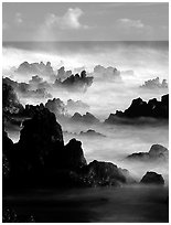 Rocks and waves at sunrise, Keanae Peninsula. Maui, Hawaii, USA (black and white)