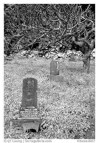 Historic Japanese cemetery in Hana. Maui, Hawaii, USA (black and white)