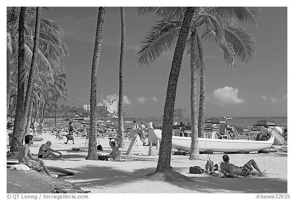 Black and white picture photo beach scene with palm trees waikiki honolulu oahu island hawaii usa
