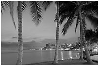 Palm trees and Waikiki beach at dusk. Waikiki, Honolulu, Oahu island, Hawaii, USA ( black and white)