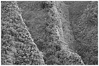 Steep ridges near Pali Highway, Koolau Mountains. Oahu island, Hawaii, USA (black and white)