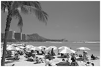 Sun shades on Waikiki Beach. Waikiki, Honolulu, Oahu island, Hawaii, USA (black and white)