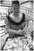 Woman preparing a fresh flower lei, International Marketplace. Waikiki, Honolulu, Oahu island, Hawaii, USA (black and white)