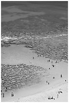 Beach and reef, Hanauma Bay. Oahu island, Hawaii, USA (black and white)