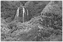 Opaekaa Falls and cliff. Kauai island, Hawaii, USA ( black and white)