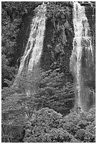 Opaekaa Falls. Kauai island, Hawaii, USA ( black and white)