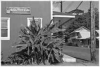Side of a store building, Hanapepe. Kauai island, Hawaii, USA (black and white)