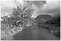 River near Hanalei. North shore, Kauai island, Hawaii, USA (black and white)