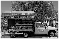 Pickup truck transformed into a fruit stand. Kauai island, Hawaii, USA (black and white)