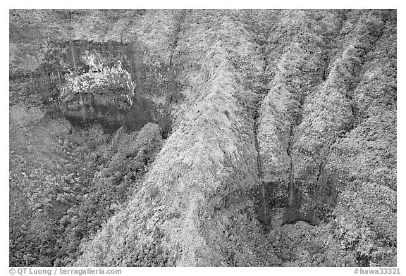Aerial view of a crater on the slopes of Mt Waialeale. Kauai island, Hawaii, USA (black and white)