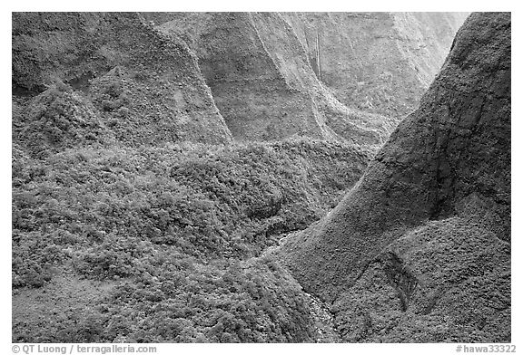 Aerial view of a valley on the slopes of Mt Waialeale. Kauai island, Hawaii, USA (black and white)