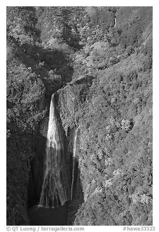 Aerial view of the Manawaiopuna falls (nicknamed Jurassic falls since featured in the movie). Kauai island, Hawaii, USA (black and white)
