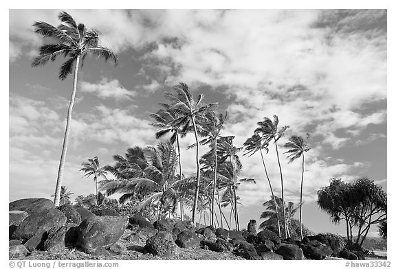 Rocks from a Heiau at the mounth of the Waiula River. Kauai island, Hawaii, USA (black and white)