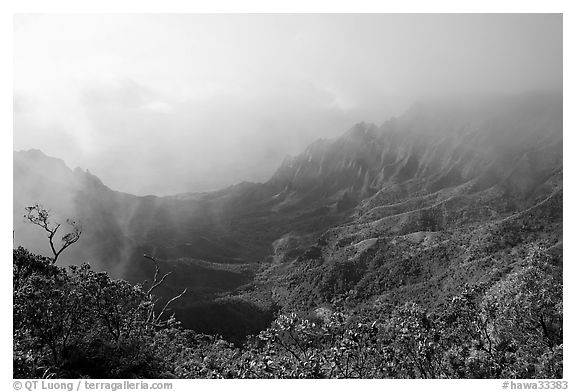 Kalalau Valley and mist, late afternoon. Kauai island, Hawaii, USA (black and white)