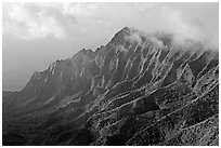 Lush Hills above Kalalau Valley, seen from the Pihea Trail, late afternoon. Kauai island, Hawaii, USA ( black and white)