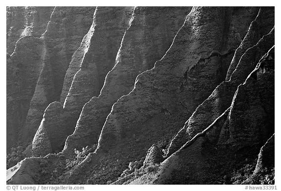 Ridges, Kalalau Valley, sunset. Kauai island, Hawaii, USA (black and white)