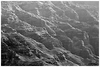 Ridges, lower Waimea Canyon, early morning. Kauai island, Hawaii, USA (black and white)