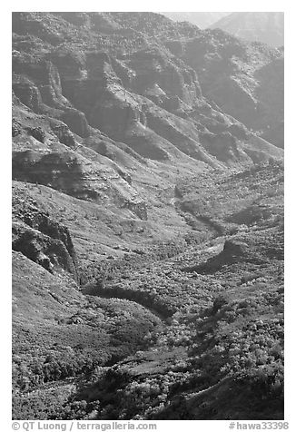 Waimea River, lower Waimea Canyon, early morning. Kauai island, Hawaii, USA (black and white)