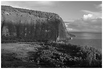 Steep valley walls, Waipio Valley. Big Island, Hawaii, USA (black and white)